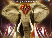 Cirque Amar à Limoges, prenez vos places!