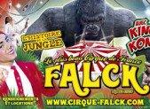 Le cirque AMAR change de nom, venez découvrir le cirque FALCK!